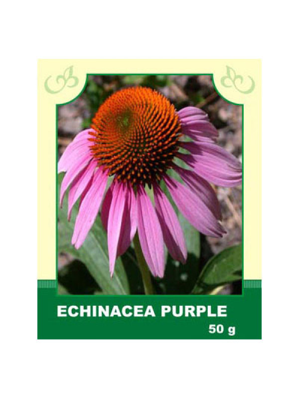 Echinacea Purple 50g