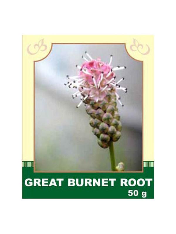 Great Burnet Root 50g