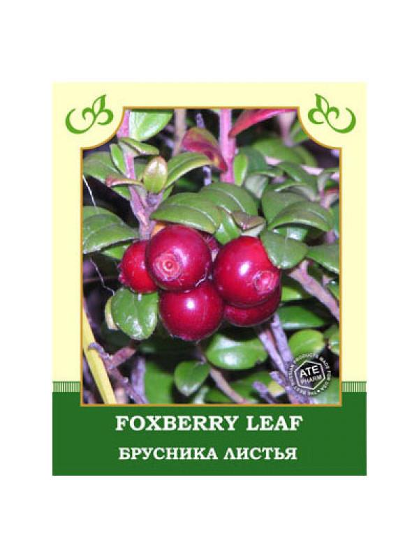 Foxberry Leaf 35g