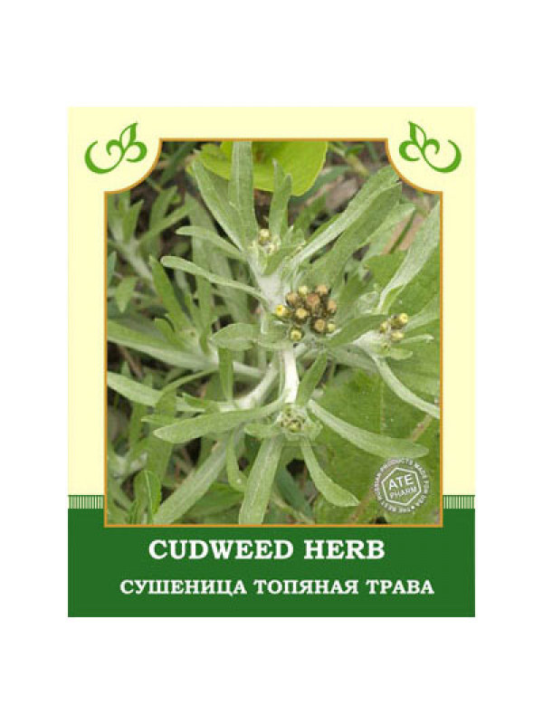 Cudweed Herb 35g