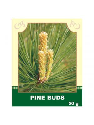 Pine Buds 50g