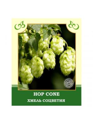 Hop Cone 30g