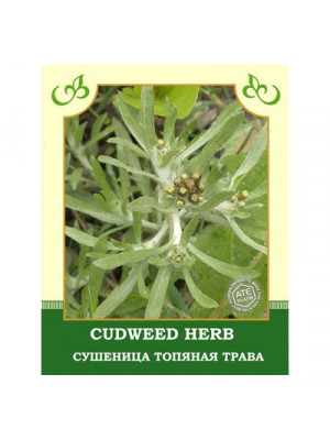 Cudweed Herb 35g