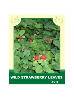 Wild Strawberry Leaves 50g