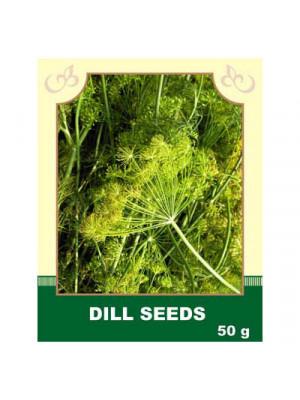 Dill Seeds 50g