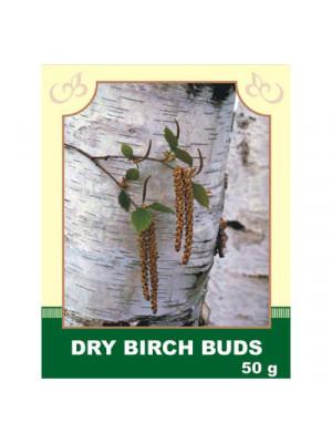 Dry Birch Buds