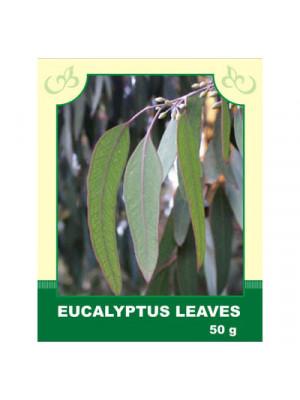 Eucalyptus Leaves 50g