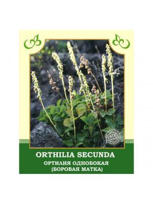 Orthilia Secunda 25g