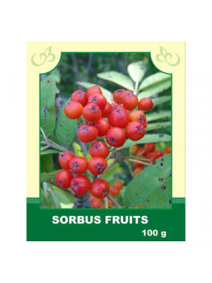 Sorbus Fruits 100 g