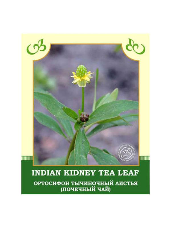 почечный чай ортосифон тычиночный в пакетиках